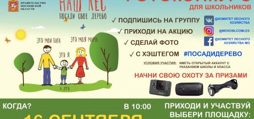 посади дерево101